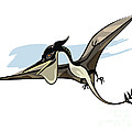 Illustration Of A Pteranodon Dinosaur by Stocktrek Images
