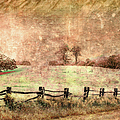 Imaginary Morning On The Blue Ridge II by Dan Carmichael