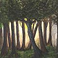 Imagined Forest by Carmen Paris