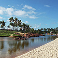 Imbassai River And Beach by C. Quandt Photography