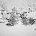 Imes Snow Bridge by Tammie Temple