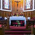 Immcaulate Conception Altar by Donna Cavanaugh