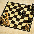Immortal Chess - Anand Vs Topalov 2005 by Alexander Senin
