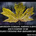 Imperfection by Don Schwartz