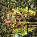 Impressionism North Carolina by Beth Akerman