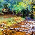 Impressionist Rocky Creek by Daniel Eskridge