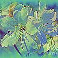 Impressionistic Blue Blossoms by Dora Sofia Caputo Photographic Design and Fine Art