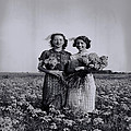 In A Field Of Flowers Vintage Photo by Cathy Anderson