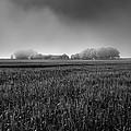 In A Fog by Svetlana Sewell