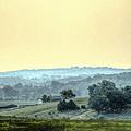 In A Misty Hollow by William Fields