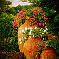 In A Portuguese Garden - Digital Oil by Mary Machare