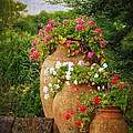 In A Portuguese Garden - Photo by Mary Machare