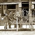 In Almond Blossom Time San Francisco Chinatown Circa 1912 by California Views Archives Mr Pat Hathaway Archives