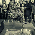 In Balance by Roberto Pagani