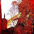 In Bruges by Joseph J Stevens