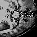 In God We Trust by Jon Cody