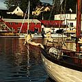 In Harbor by Karol Livote