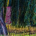 In Leaf Fall by Edgar Laureano