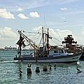 In Port by Robert Brown