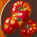 In Search Of The Perfect Tomato by Garry McMichael