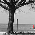 In The Distance South Haven Lighthouse by Ashlee Kuenzli