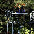 In The Garden by Neil Doren