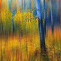 In The Golden Woods. Impressionism by Jenny Rainbow