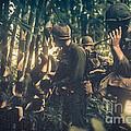 In The Jungle - Vietnam by Edward Fielding