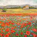 In The Poppy Field by Robie Benve