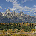 In The Shadow Of The Tetons by Sandra Bronstein