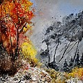 In The Wood 453101 by Pol Ledent