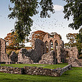 Inch Abbey by George Pennock