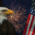 Independence Day by Angie Vogel