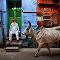 India by Fadhel Almutaghawi