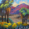 Indian Canyon In Spring by Diane McClary