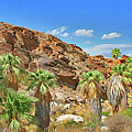Indian Canyons View In Palm Springs by Ben and Raisa Gertsberg