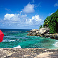 Indian Ocean Moyenne Island Seychelles by Panoramic Images