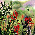 Indian Paint Brush by Barbara Jewell