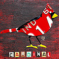 Indiana Cardinal Bird Recycled Vintage License Plate Art by Design Turnpike