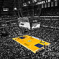 Indiana Pacers Special by David Haskett II