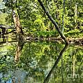 Indiana Reflections by Adam Jewell