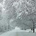 Indiana Snow by Ryan Wadsworth
