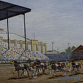 Indiana State Fair by Clifford Cox