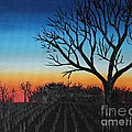 Indiana Sunset by Lee Alexander