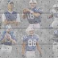 Indianapolis Colts Legends by Joe Hamilton