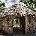 Indigenous Tribe Huts In Puer by Bryan Mullennix