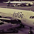 Indigo Aircraft Getting Ready In Changi Airport by Ashish Agarwal