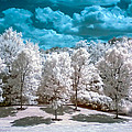 Infrared Country by Anthony Sacco