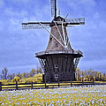 Infrared Photo Of The Dezwaan Dutch Windmill On Windmill Island In Holland Michigan by Randall Nyhof