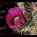 Inner Strength by Phyllis Denton